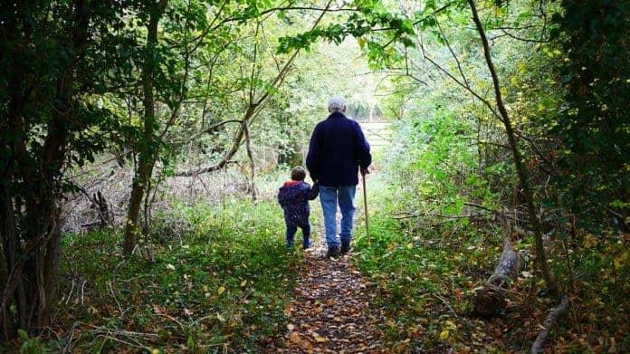 Programa de Padres y Abuelos